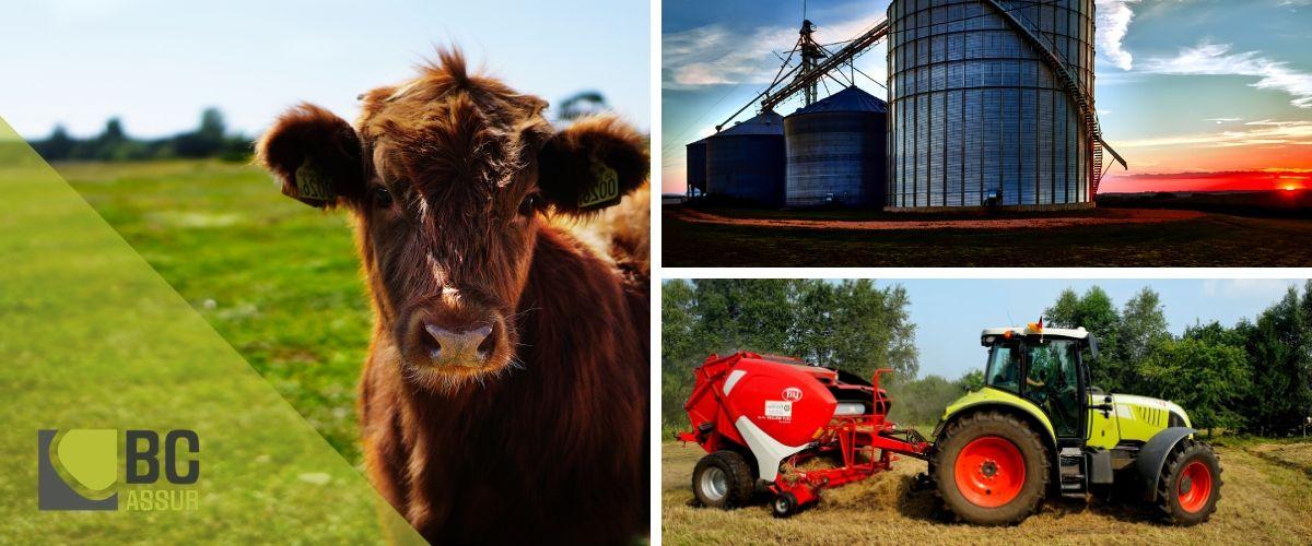 assurance exploitation agricole